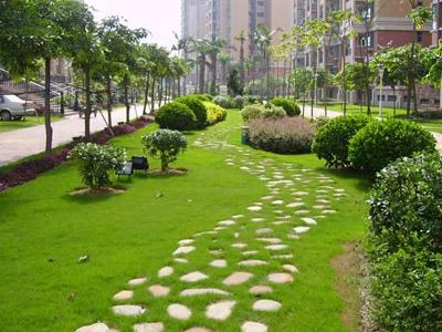 园林绿化养护展示